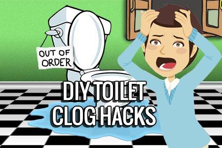toilet clog kingston