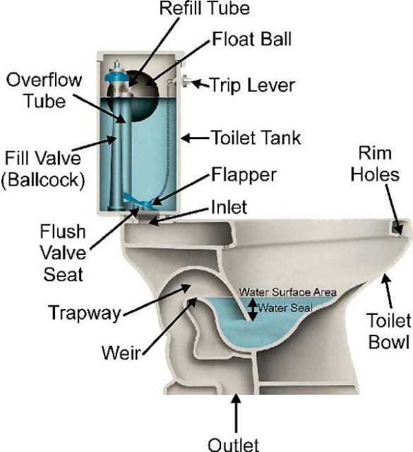 noisy toilets oakville