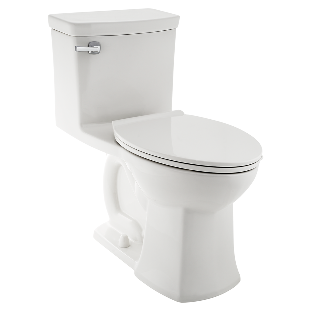 Replace Your Toilet